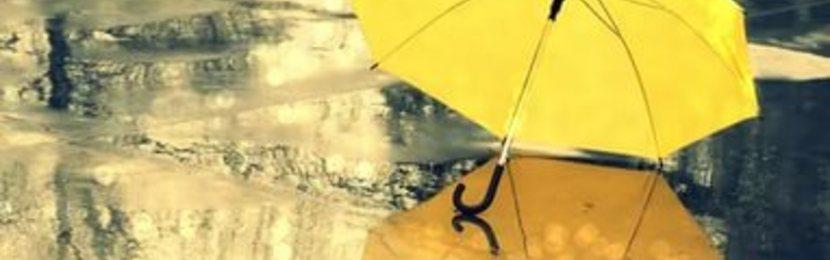 зонт,логотип на зонте,шелкография,печать логотипа на зонте