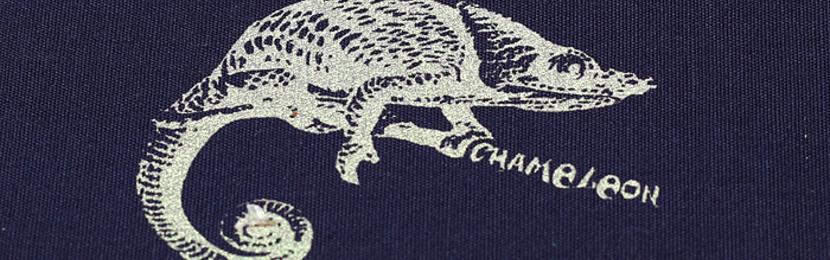 краски для шелкографии,печать логотипа на рекламном текстиле,текстильная продукция с логотипом,принты на промо одежде